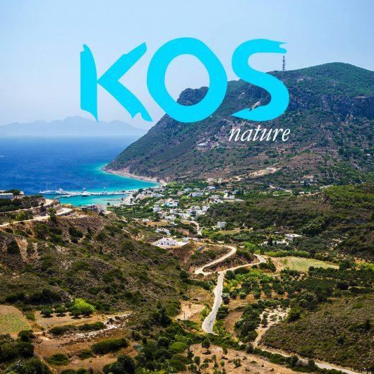KOS_social-6 (1)